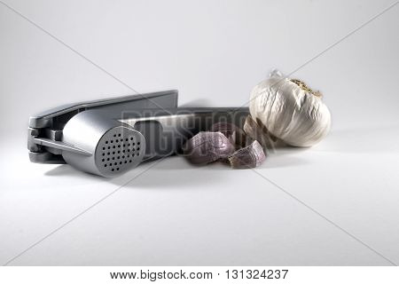 Brushed steel garlic press with garlic bulb and cloves on white background