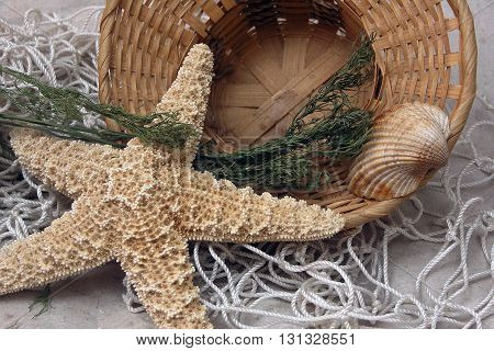 fresh gentle resort marine still life with starfish basket shell and fishnet