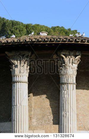 roman Temple of Hercules Victor in Forum Boarium in Rome Italy