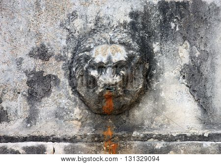 medieval roman marble fountain in form of bas-relief lion head in italian patio Rome Italy