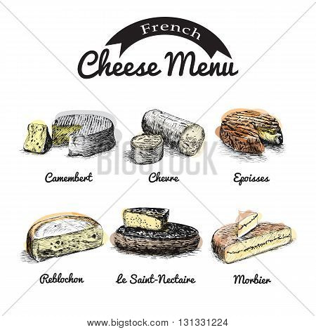 Vector illustrated Set #1 of French Cheese Menu. Illustrative sorts of cheese from France.