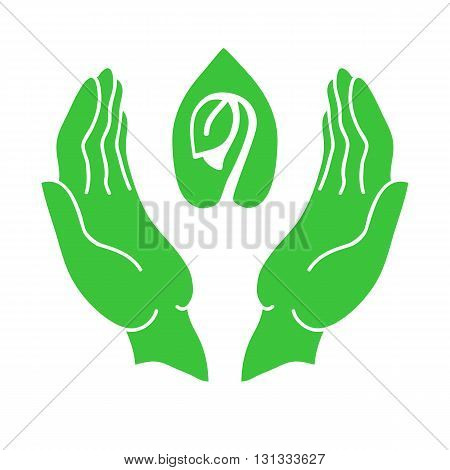 Hands and sprout green icon. Eco-design environmental protection concept.