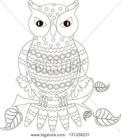 Zentangle stylized owl black and white hand drawn, vector illustration