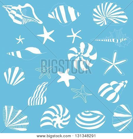 Seashells and starfish pattern vector, blue background.