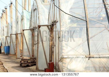 Greenhouses in a row