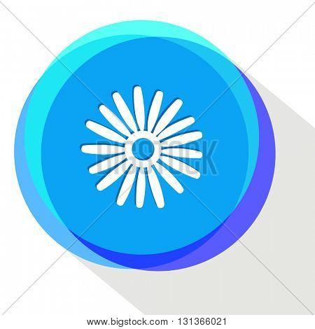 camomile. Internet template. Vector icon.