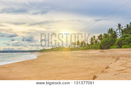 Summer sandy beach with palm trees and partly cloudy sky