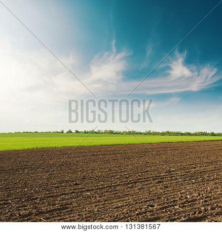 black plowed field in spring clouds in blue sky on sunset