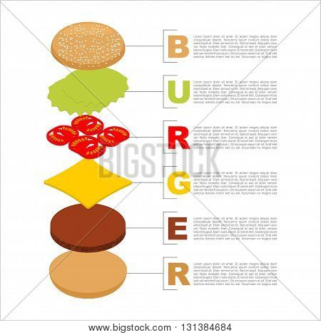 Burger Infographics. Structure Of Hamburger Isometrics. Fresh Bun. Cutlets. Cheese And Lettuce. Tast