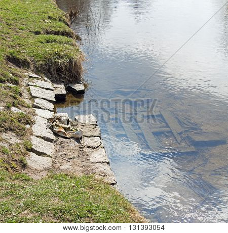 riverside and wooden planks in the riverbed