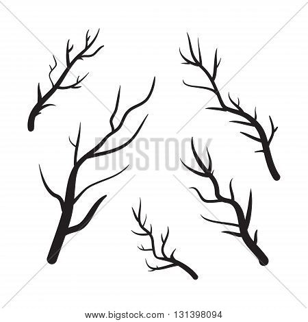Branches vector hand drawn illustration. Icons on transparent background.