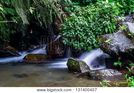 Forest stream taken from Philippine highlands in April 2016