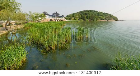 The bridge in Chinese Asian style. The bridge with a roof from the shore grass algae water.