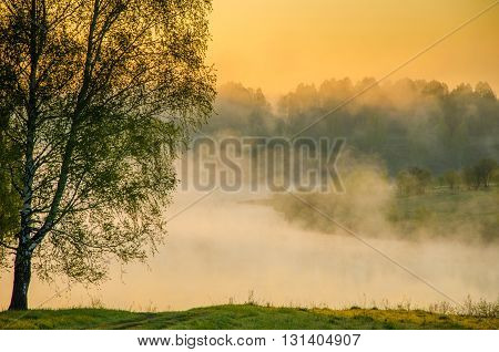 fog over the water . morning fog. thick morning mist over the lake . around the lake grow birch . landscape early in the morning warm . the sun rises and lights up the forest with a pond in the fog .