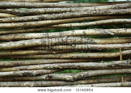 Background: a wooden wattle fence.