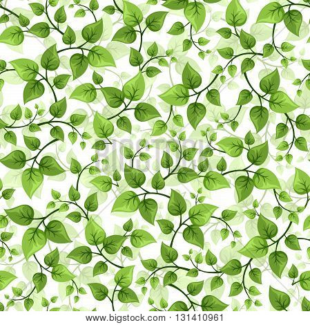 Vector seamless background with branches with green leaves.