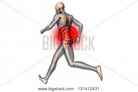 Lower Spine Pain In Human Body Transparent Design