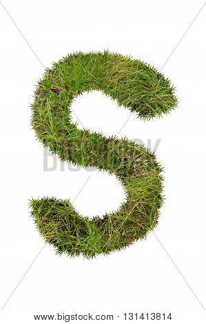 fresh green grass letter on white background - S