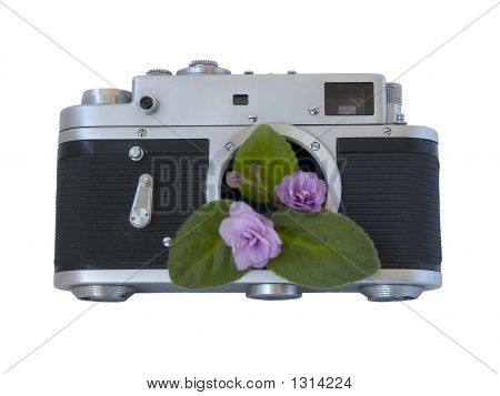 Beauty Of Old Things - Violet From Old Rangefinder Camera