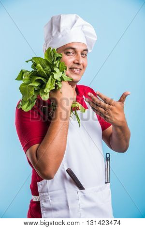 indian male chef holding fresh green spinach leaves, asian male chef holding fresh vegetable, isolated over blue background