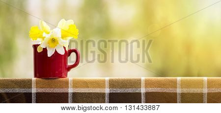 Banner of Easter daffodil flowers in a red cup