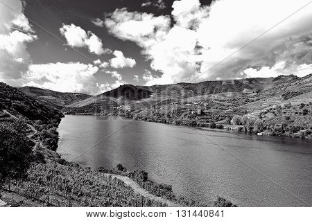 Vineyards in the Valley of the River Douro Portugal Retro Image Filtered Style