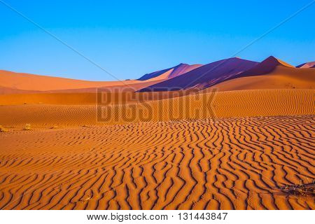 The dunes and sandy orange waves. Travel to Namibia. Namib-Naukluft National Park