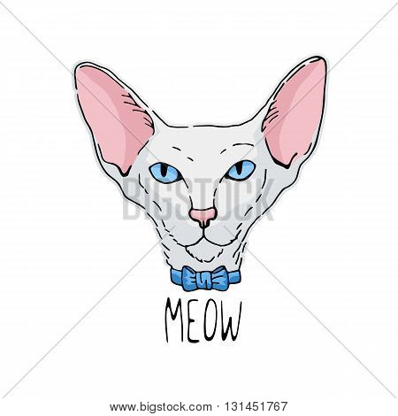 Hand drawn portrait of oriental cat. White cat with blue eyes.