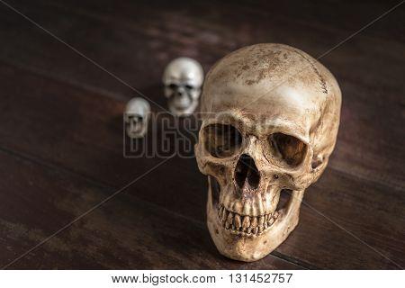 human skull on wooden table horror halloween concept still life style