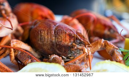Red boiled crawfish on a plate with lemon