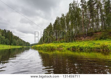 The river and banks with trees on both sides in summer cloudy day