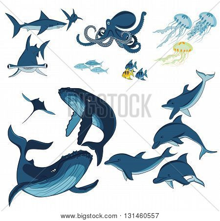 marine animals and fish whales dolphins sharks octopus jellyfish and fish isolated on white background vector illustration