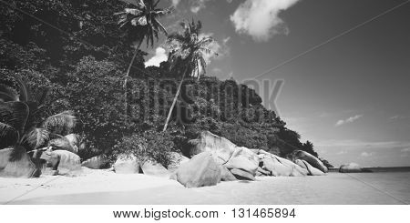 Beach Coastline Landscape Island Travel Sea Concept