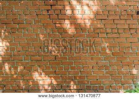 red brick wall with patches of light from the sun