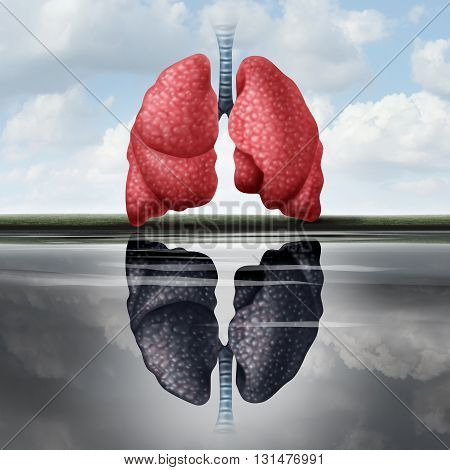 Lung health concept as healthy lungs casting a reflection in the water of an unhealthy human organ as a medical metaphor for cardiovascular disease risk with 3D illustration elements.