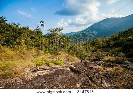 Jungle Trekking On Koh Phangan