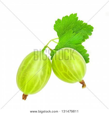 Two fresh ripe green gooseberry berries with leaves isolated on white background. Design element for product label, catalog print, web use.