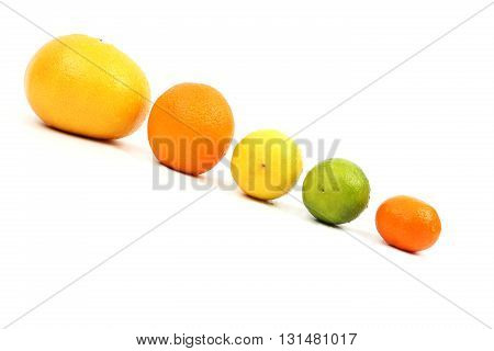 citrus fruits lie on an incline on a white background