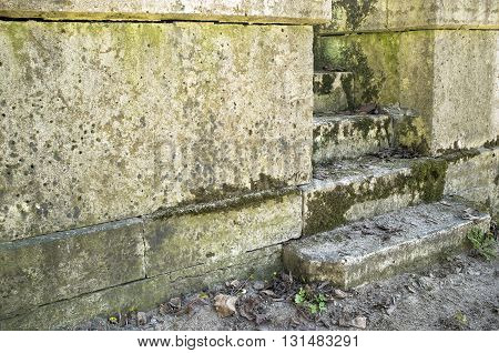 old mossy steps leading up and starting with the dust of the earth