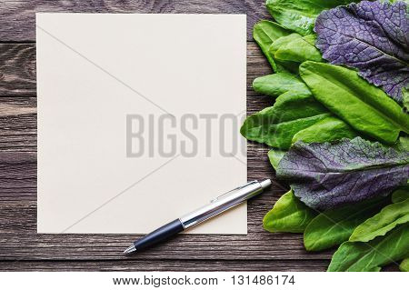 Fresh leaves of sorrel on wooden background. Rustic table with green and violet edible leaves. Place for text.
