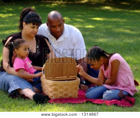 A Peek In The Picnic Basket