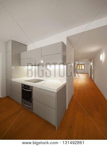Interior of modern apartment, kitchen