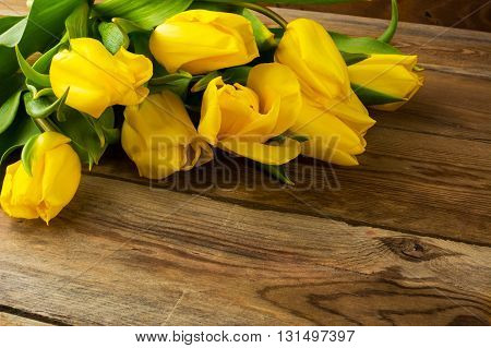 Yellow tulips birthday background. Spring flowers. Flowers postcard. Flowers greeting . Birthday card. Tulips. Birthday background.