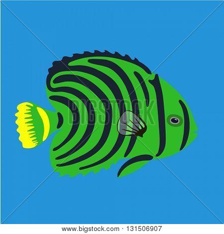 Tropical ocean fish, vector illustration