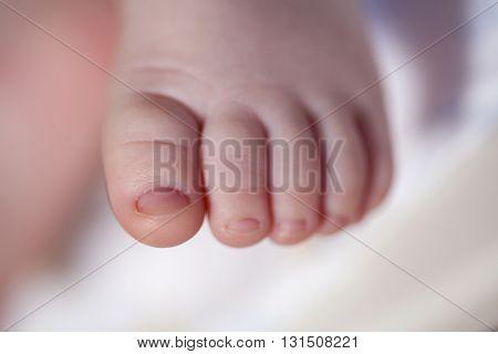 Tiny foot of newborn baby