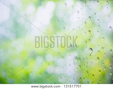 Green soft and blur natural abstract background with raindrop
