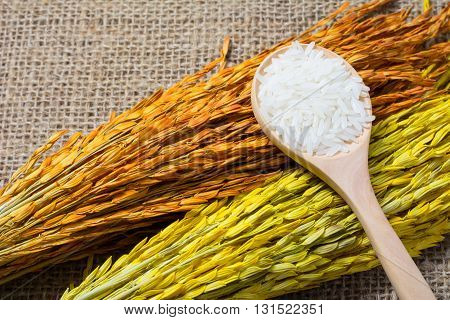 Rice With Wooden Spoon On Sack Background