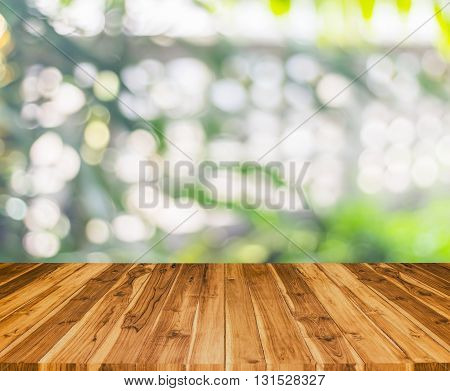 Old Wood Texture And Glitter Of Tree  Background