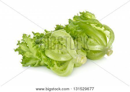 green frillies iceberg lettuce on white background