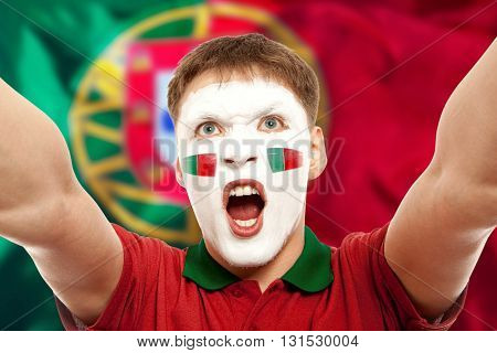 Portugal fans at the stadium. Football, soccer fan